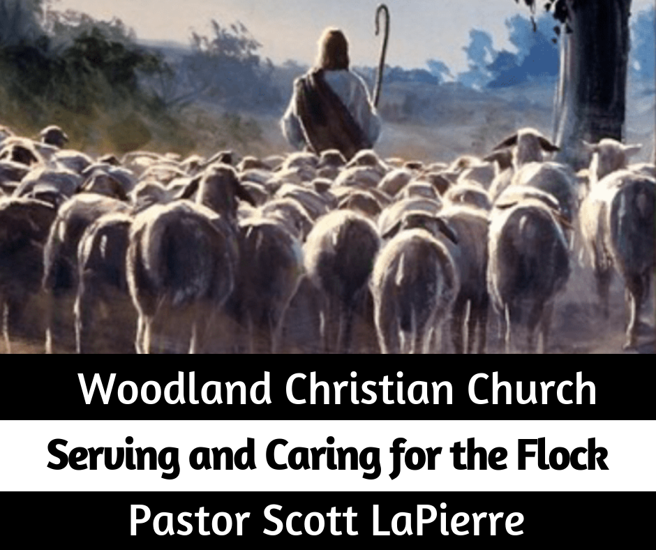 Serving and Caring for the Flock